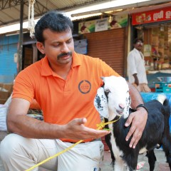 Hansen Thambi Prem Disasters Manager at World Animal Protection