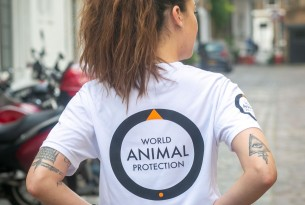 World Animal Protection online shop - tote bags, t-shirts, cards and gifts