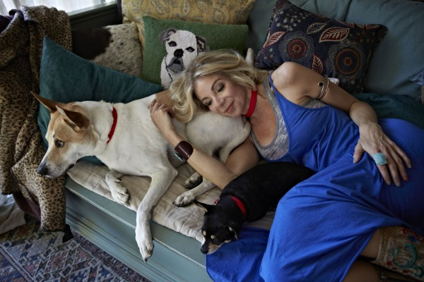 Canadian comedian Carla Collins backs campaign to save dogs