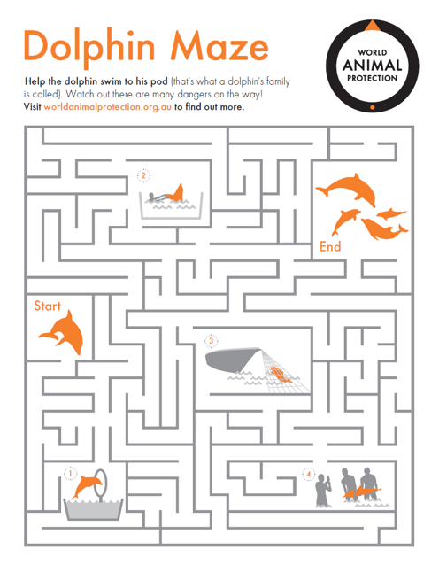 Activity sheet - Dolphin Maze - World Animal Protection