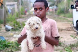 Boy holding white dog in Vanuatu - Disaster response - World Animal Protection