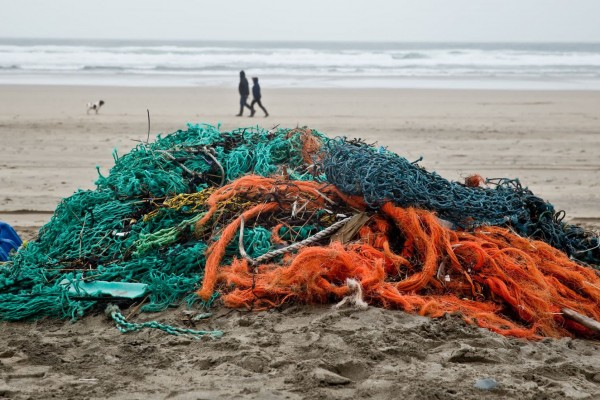 Ghost gear found after a beach clean in Cornwall, UK - Sea Change - World Animal Protection