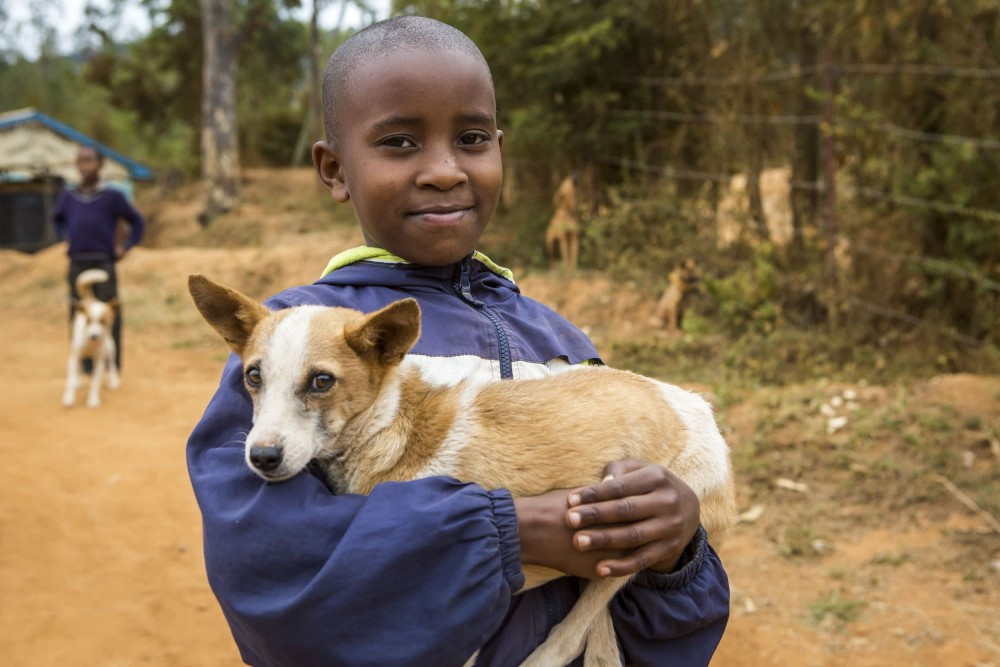 A young boy bringing his dog to be vaccinated