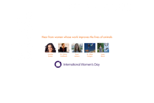 International Women's Day: Hear from women whose work improve the lives of animals