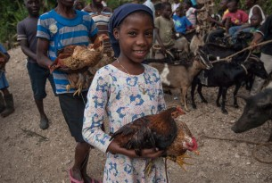 Girl holding chicken in Haiti - World Animal Protection - disaster management