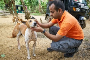 Dr. Akash Maheshwari examines a local dog in Malabe, a suburb of Colombo.