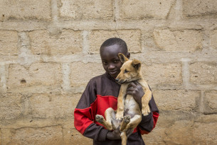 In August 2018 World Animal Protection was in Makueni County, Kenya to oversee a small rabies vaccination drive being carried out in the area.