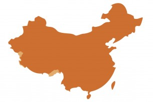 China UN map - World Animal Protection