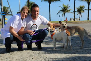 Meet the rescue dogs of Rio